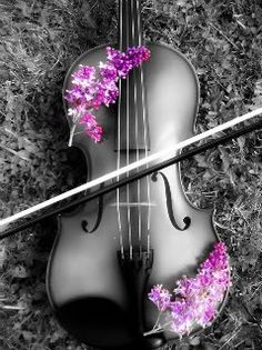 13 years of my life.  When I was a little girl I dreamed of playing in the symphony.  On occassion I think of taking lessons again to make this dream come true.
