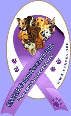 Cancer  is the single biggest cause of death in dogs over the age of 2. Please do what you can to help stop this epidemic!