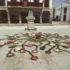 #Alfombra de #flores en honor al día del #Corpus #Cristhi en #Bermillo de #Sayago# realizada por la #Mayuela