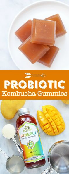 Probiotic Kombucha Gummies Recipe | DIY Kombucha Gummies | Homemade Healthy Probiotic Gummies