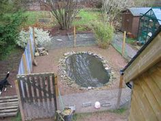 1000 images about duck ideas on pinterest duck pond for How to remove algae from pond without harming fish