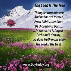 The Seed is The Tree...