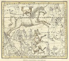 Canis Major Canis Minor Monoceros Argo Navis by mapsandposters, $11.88