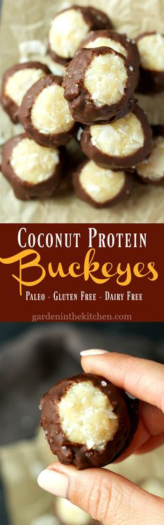 These Coconut Protein Buckeyes are a tasty no-bake, gluten-free and paleo friendly treat packed with collagen and healthy fats! Paleo Dessert, Best Dessert Recipes, Candy Recipes, Healthy Desserts, Fun Desserts, Delicious Desserts, Snack Recipes, Yummy Food, Paleo Recipes