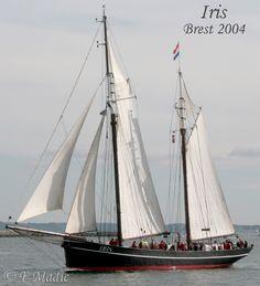 Iris est un ancien harenguier néerlandais en acier.                                                                                                                                                                                 Plus
