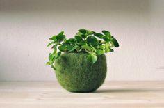 Plant pod / feutré bol / Air cachepot chute par theYarnKitchen, $21.00