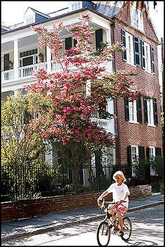 Charleston, SC (One of my favorite vacation destinations!)