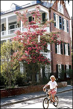 Charleston, SC (One of my favorite vacation destinations!)