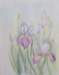 Irises (3) - WetCanvas