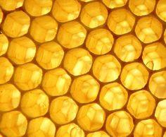 ✨⭐ Yellow ⭐✨  Honeycomb