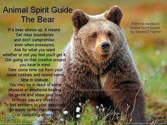 Animal Spirit Guide - The Bear