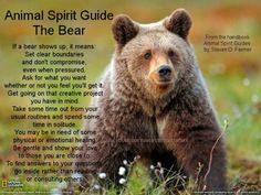 Animal Spirit Guide - The Bear