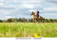 Young woman riding a horse in the countryside