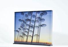 """Print in Plexiglass """"Umbrellas"""" 25x20"""