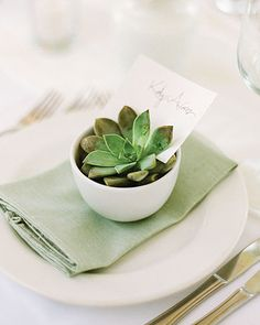 Easy-peasy place cards: tuck name cards into succulents and put the in white tea bowls