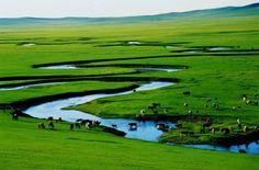 Inner Mongolia Xilin Gol prairie