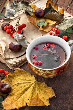 Photograph autumn leaf fall by Mykola Lunov on 500px