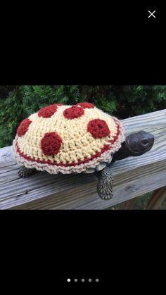 Cute Tortoise, Tortoise Habitat, Turtle Habitat, Baby Tortoise, Tortoise Care, Tortoise Turtle, Turtle Pond, Pet Turtle, Turtle Costumes