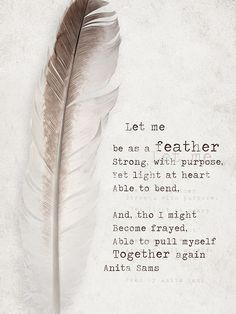 A feather...