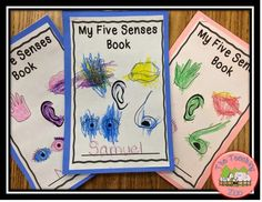 http://www.teacherspayteachers.com/Product/Five-Senses-Theme-Learning-Pack-1427118
