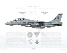 Aircraft profile print of F-14B Tomcat VF-32 Swordsmen, AC107 / 163224 / STS 107 Memorial Service, 2003 - Profile Print in vario
