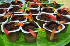 Chocolate pudding cups with crush oreos