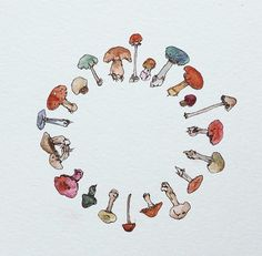 Circle of Toadstools . Mushroom Paint, Mushroom Drawing, Psychedelic Drawings, Hippie Art, Art Drawings Sketches, Arte Floral, Chalk Art, Copics, Cute Art