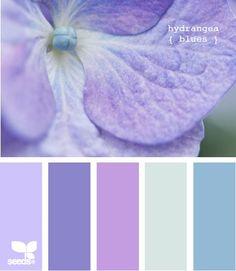love this palette! Gorgeous palette from Design Seeds bedroom Colour Pallette, Colour Schemes, Color Combos, Purple Color Palettes, Pantone Azul, Decoration Palette, Wie Zeichnet Man Manga, Blue Hydrangea, Hydrangeas