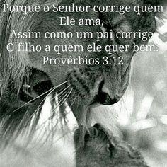 Provérbios 3:12