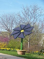 Solar Panel Flower at Olbrich Gardens, Madison, WI