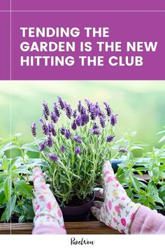 Zillennials are obsessed with gardening, according to a new survey out of the U.K. But is it better than hitting the club? In a post-COVID world, maybe. #garden #plants #gardening Home Trends, New Trends, Benefits Of Gardening, Cool Plants, Pansies, Trees To Plant, Garden Plants, Herbs, Club