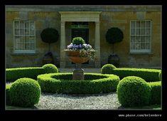 Like FB SerMujerEnPlenitud is part of Topiary garden - Boxwood Garden, Topiary Garden, Garden Urns, Box Garden, Formal Gardens, Small Gardens, Outdoor Gardens, Formal Garden Design, Driveway Landscaping