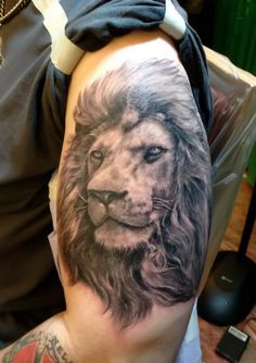 Aslan? (Shane O'Neill from Spike TV's Ink Master's Page)