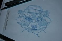 raccoon tattoo #tattoo sketch #raccoon tattoo sketch #tattoo drawing #drawing