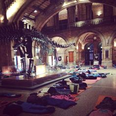 Luke Thornton on Twitter: Amazing night at the @NHM_London - great activities and we all had a top time! #naturalhistorymuseum #Science
