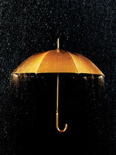 Black and gold umbrella.