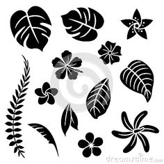Illustration about A set of tropical flowers and leaves. Illustration of tropical, style, leaves - 36931471 Tropical Flowers, Tropical Leaves, Exotic Flowers, Purple Flowers, Stencil Patterns, Stencil Art, Flower Stencils, Flowers In Hair, Paper Flowers