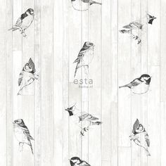 Love the romantic look? This romantic wallpaper pen drawn birds on wooden planks from reclaimed wood in black and matt white adds warmth and character to your interior. The romantic look is an eclectic style that mixes antique furniture with pastel colour Home Greenhouse, Tropical, Romantic Look, En Stock, Eclectic Style, Photo Wallpaper, Vintage Wood, Designer Wallpaper, Pastel Colors