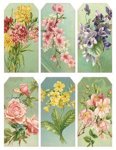 Lilac & Lavender: The Original Postcard images from a set, FLORAL FAVORS, found on TuckDB: Carnations, Fruit blossoms, Violets,  Roses & Forget-Me-Nots, Primrose, Thorny Pink Dog-Roses.