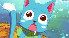 Image result for happy fairy tail he likes you
