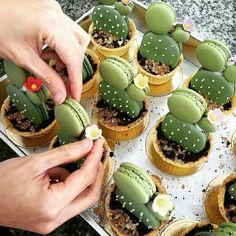 Macaron cacti! See this Instagram photo by @nellacasadiro • 2,764 likes