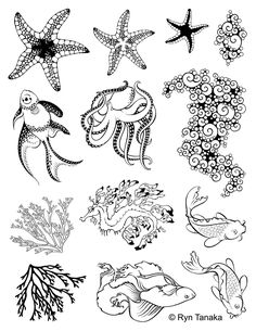 Designs by Ryn - Unmounted Rubber Stamp Sheet - Sea Creatures 2 sheet)-Sea Creatures 2 includes 8 rubber stamp designs from Ryn's collection Sea Animals Drawings, Creature Drawings, Art Drawings, Drawing Sketches, Motifs Organiques, Sea Creatures Drawing, Leafy Sea Dragon, Scrapbooking Photo, Ocean Tattoos