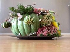 Kallebas als bloemstukje