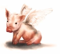 When Pigs Fly by realist-n.deviantart.com on @DeviantArt