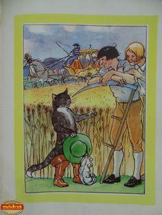 Livre Collection ... Les contes de PERRAULT