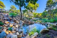 The current work in progress for Nature Zone is beginning to take form #landscape #landscapedesign #landscaper #landscape_lovers #nature_specialist #waterscape #waterfall #designinspiration #treescape #nativeplants #workinprogress #workspace