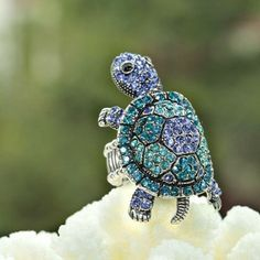 Blue Cocktial Ring Turtle, I have this in various shades of green. I love the blue tho. Cute Turtles, Baby Turtles, Sea Turtles, Beach Jewelry, Cute Jewelry, Jewelry Rings, Sea Turtle Jewelry, Turtle Life, Turtle Figurines