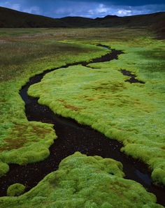 Iceland moss by F-Stop photographer David Ward Oh The Places You'll Go, Places To Visit, Travel Around The World, Around The Worlds, Iceland Island, Australia Tourism, F Stop, Earth From Space, Iceland Travel