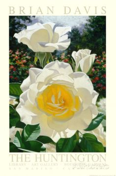 The Huntington Rose Garden Art by Brian Davis at AllPosters.