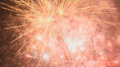 Csongrád TV – Híradó – 2017.01.02. Dandelion, Tv, Flowers, Plants, Dandelions, Television Set, Plant, Taraxacum Officinale, Royal Icing Flowers